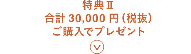 特典Ⅱ 合計30,000円(税抜) ご購入でプレゼント